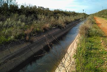 Conexión del Canal del Bajo Guadalquivir con la Zona Arrocera de la Margen Izquierda