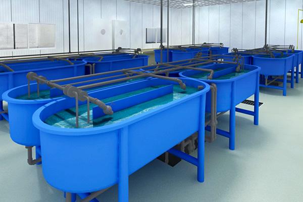 Nave experimental Centro IFAPA