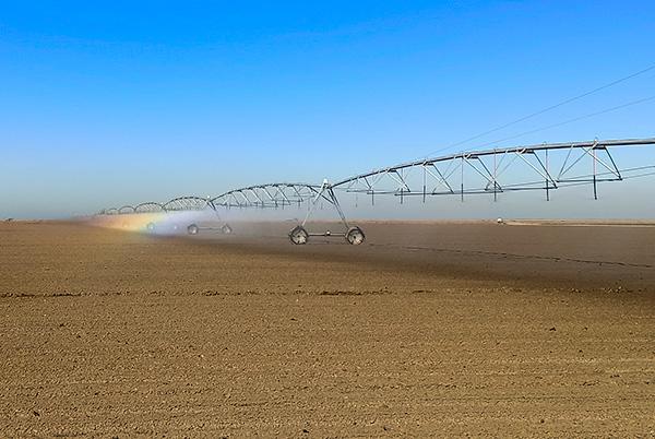 Mejora de suelos agrícolas de Veta La Palma